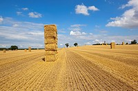 straw bales and stubble