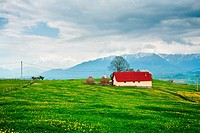 House in the mountain meadow