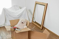 Teddy bear in a cardboard box (thumbnail)