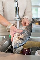 Woman washing a fish in a kitchen sink