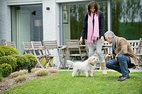 Couple playing with their pets in a garden
