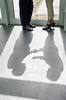 Shadow of two business executives shaking hands