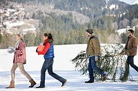 Couples and dog carrying fresh cut Christmas tree and gifts in snow