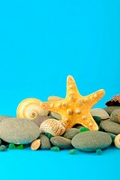 Starfish and set of objects of the sea underwater world
