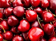 Sweet cherry. background. Group of Cherries formin