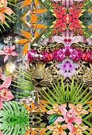 Collage of jaguars and tropical plants