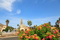 Museum Of Man And The California Bell Tower In Balboa Park, San Diego California United States Of America