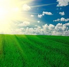 Field of grass,blue sky and sun