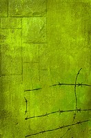 Background green barbed wire