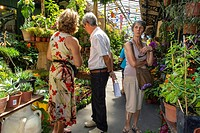 Paris, France, People Shopping in Flower and Plant Market, Ile de la Cité