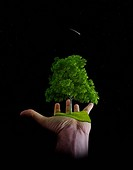 The nature is in the hands of the man _ Environment save
