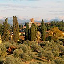 view with San Miniato al Monte church in Florence,