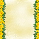 Congratulation to the holiday with frame and yellow flowers