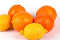 Citrusfruechte