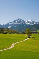 Bavaria, Europe, Upper Bavaria, scenery, agriculture, farming, rural, sky, veil clouds, cloud, Staufen, Hochstaufen, mountain, mountains, rock, meadow...