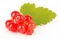 Bunch of ripe redcurrants with green leaves, isolated on white background.