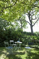 A table and chairs set up under the shade of a tree (thumbnail)
