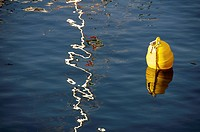 A play of sunlight on water beside buoy