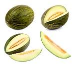 Futuro_Melone in 4 verschiedenen Formen