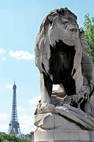 Löwe vor Eiffelturm