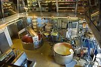 svizzera, canton berna, caseificio specializzato nella produzione del formaggio emmental