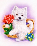 dog, baby, animals, gift, puppy, dog illustrations, rose, fauna, child, fluffy