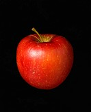 Red apple against black background