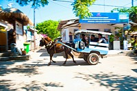 Cidomo, a horse and cart on Gili Trawangan, Gili Islands, Indonesia, Southeast Asia, Asia