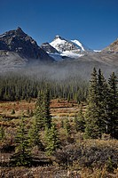 Fog in the Alpine valley, Jasper National Park, UNESCO World Heritage Site, Alberta, Canada, North America