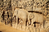 Arjuna´s Penance granite carvings, Mamallapuram Mahabalipuram, UNESCO World Heritage Site, Tamil Nadu, India, Asia