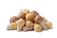 Fresh Almond and Horse Mushrooms
