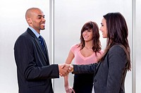 Business woman shaking hands with her partner