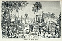 ´Dobbo in the Trading Season´. Trader in Dobbo, Aru Islands, Indonesia. Illustration from 'The Malay Archipelago' by Alfred Russel Wallace 1874. T...