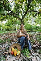 Cocoa plantation. Woman with cocoa cacao pods she has harvested from trees at a plantation. Photographed in Sausu Peore, Central Sulawesi, Indonesia.