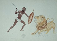 African tribesman hunting a lion. Sketch by the British artist Thomas Baines.