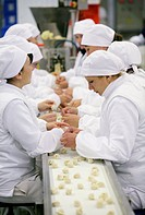 Frozen food manufacturing. Workers on the production line of a factory producing ready_to_cook frozen foods. Here they are making pelmeni dumplings. N...