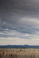 Grey sky in Australia