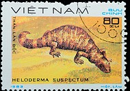 VIETNAM _ CIRCA 1983: stamp _ animal reptile