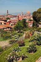 Italy, Florence, Rose Garden and city monument