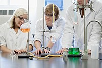 College students working in the lab