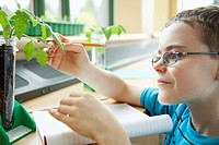 Elementary student taking measurements of plant (thumbnail)