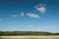 Feld und blauer Himmel