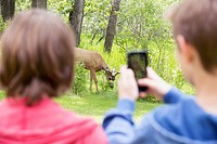 Middle school students taking picture of deer