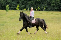 Young woman, 19 years, on horseback, Friesian horse, trotting on a meadow, Bavaria, Germany, Europe