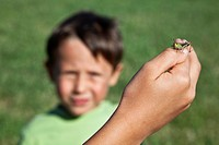 Grasshopper and boy in the Italian Dolomites, Italy