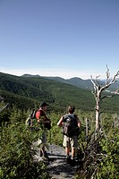 Hikers climb Caps Ridge Trail during the summer months. Located in the White Mountains, New Hampshire USA