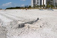 SAND SCULPTURE AIRPLANE ON LIDO BEACH ON LIDO KEY SARASOTA FLORIDA