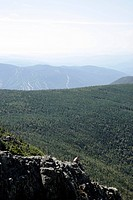 A hiker explores and photographs the rocky summit of Mount Flume during the summer months .....Located in the White Mountains, New Hampshire USA