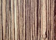 tree wood textured background