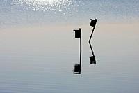 Birdboxes silhouetted in a salt marsh, Richard DeKorte Park, Lyndhurst, NJ, USA